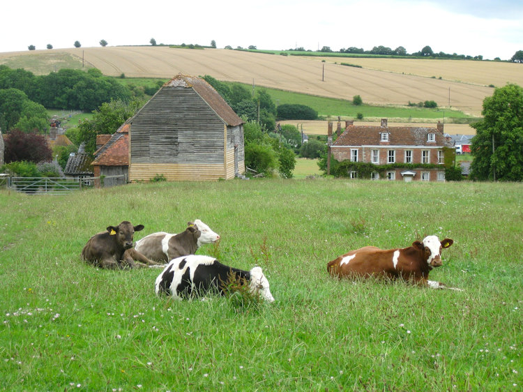 Farm Smallholding and Agricultural Rural Mortgages and Finance Broker in UK